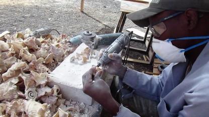 caboverdiani al lavoro (37)